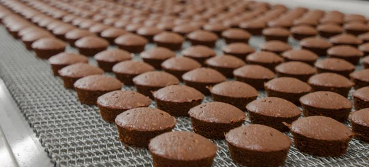 brownies on manufacturing conveyor